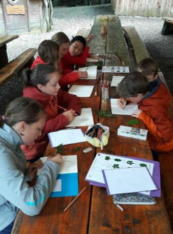 English in Nature Camps - Children studying plants outdoors with guidebooks and drawing in notebooks