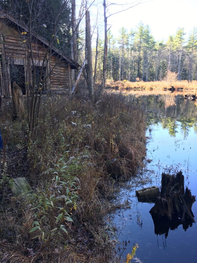 Hunters cabin at the pond's edge